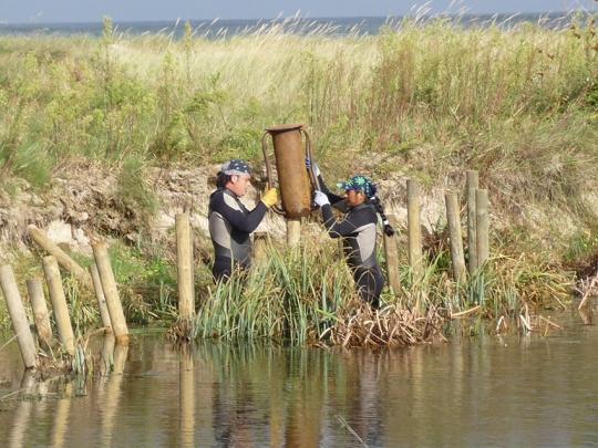 Instalación de estacas en ambiente costero