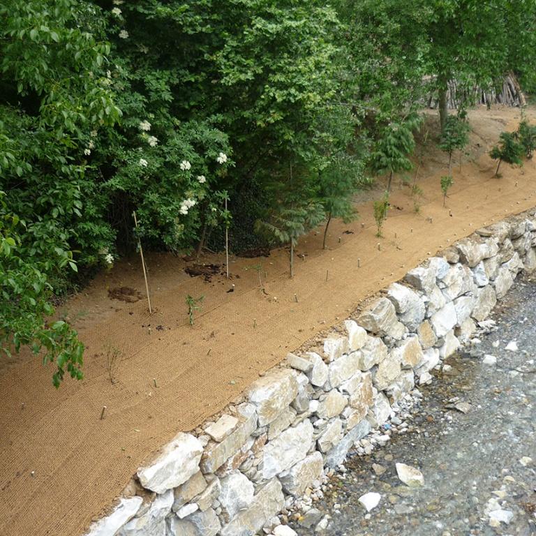 Mantas orgánicas y estaquillado en ambiente ripario