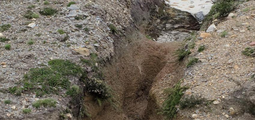 Restauración de erosión hídrica en salida de ODT