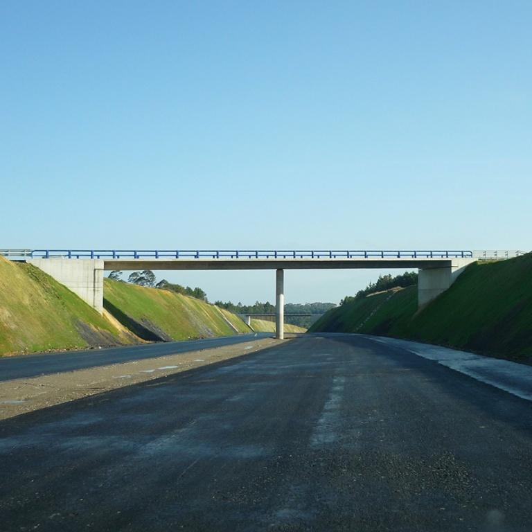 Hidrosiembra reciente en talud de autopista