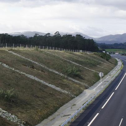 Hidromanta despues de un año en talud de autopista